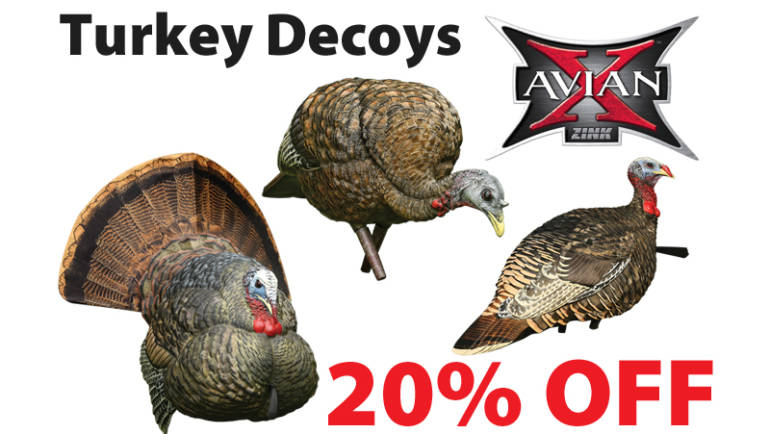 Avain – Turkey Decoys
